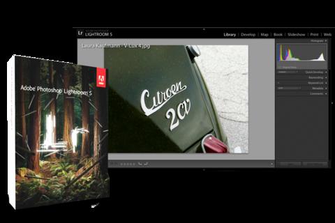 PROF-IMAGES-LANDSCAPE_teaser-480x320-2